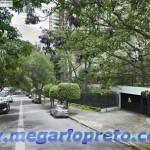 Lei Cidade Limpa em Rio Preto para mais árvores, melhor qualidade do ar e menos poluição visual