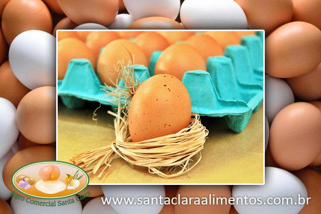 Distribuidora de Ovos em São Paulo Agro Santa Clara Alimentos